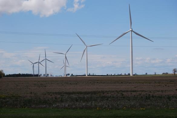 Wind Turbines, Leamington, Ontario, Kim Perrotta